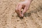EL AMOR CRECE Si queremos cosecha, Hay que sembrar.. Con ilusion,con alegria, Vendrán lluvias.. El sol las llenara, DARA energias y ese brote nacerá !! La producción es segura, Las espigas crecerán.. Y el sembrador,HORGULLOSO VOLVERÁ !!!1 10-3-2017 ABRAZOS AMIGOS