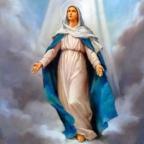 LA SOLEMNIDAD DE LA VIRGEN MARIA.