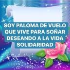 SOY PALOMA DE VUELO
