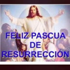 A MIS AMIGOS DE WORDEPRESS,OSQUIERO EN LOCURA AÑO 2O21,SOIS HERMOSURA !!FELICIDADES !!